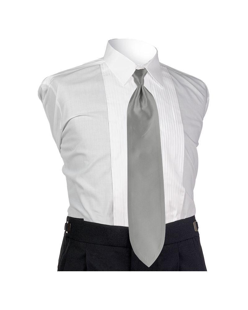 Silver Spectrum Solid Tie
