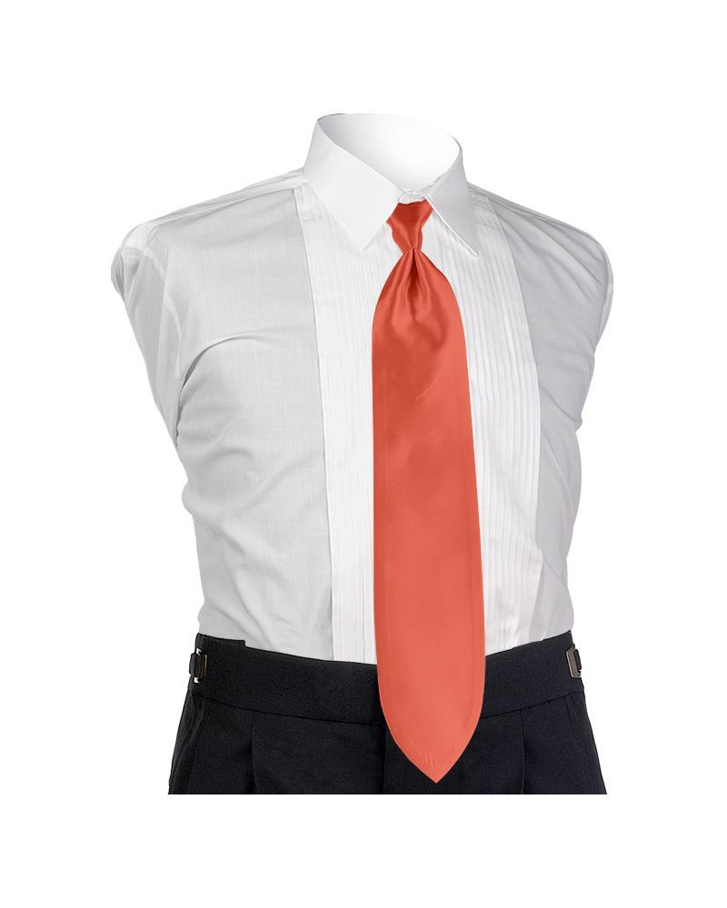 Persimmon Solid Tie