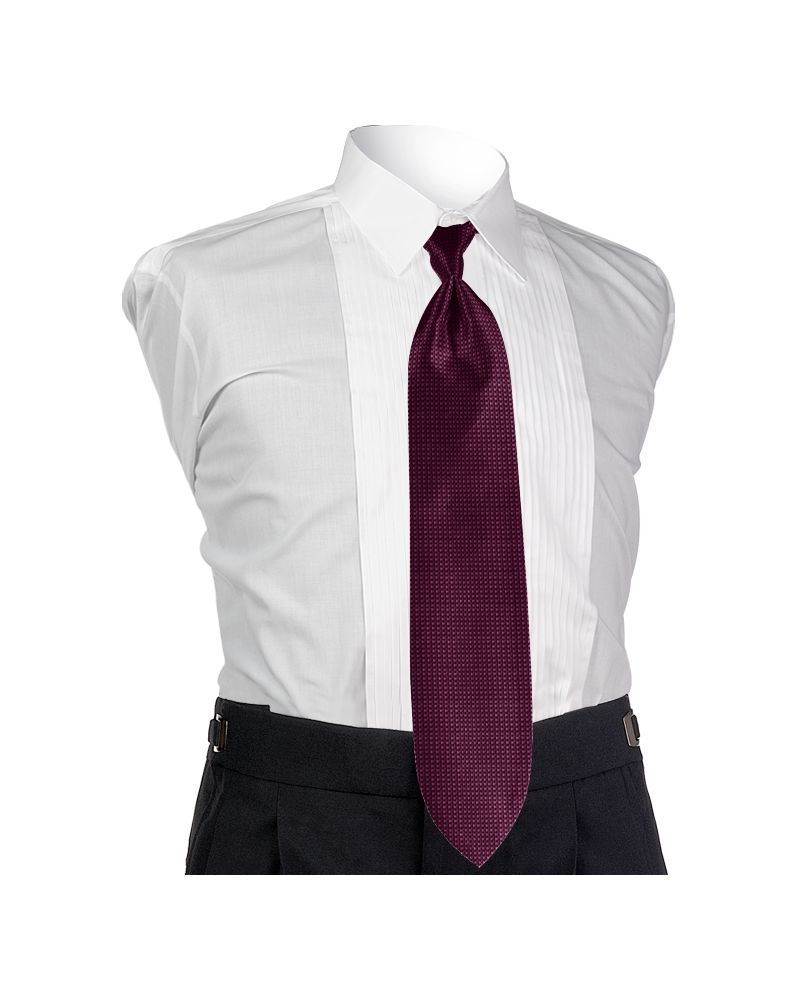 Aubergine Solid Tie