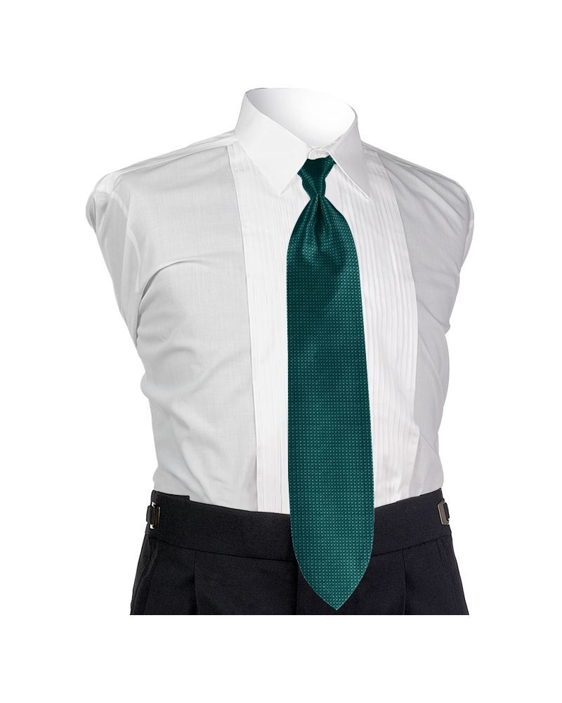 Teal Oasis Solid Tie