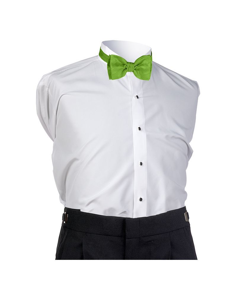 Lime Spectrum Bow Tie