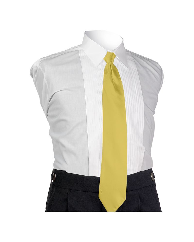 Buttercup Aries 4-In-Hand Tie