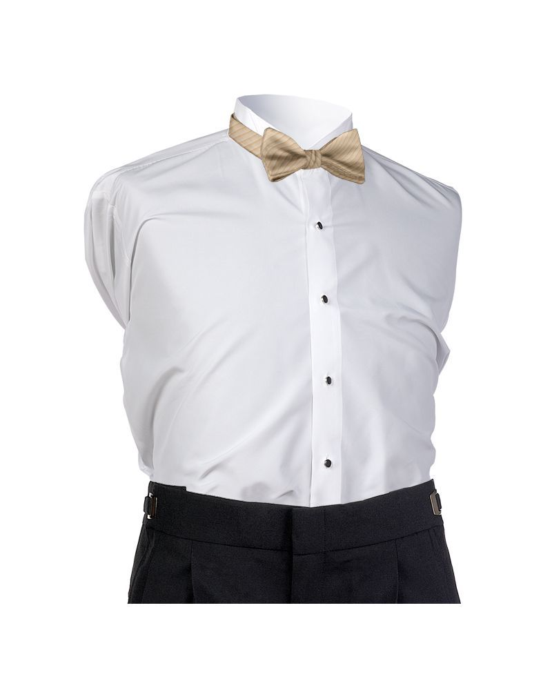 Golden Synergy Bow Tie