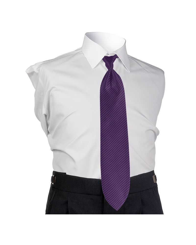 Synergy Purple Passion 4-in-hand Tie