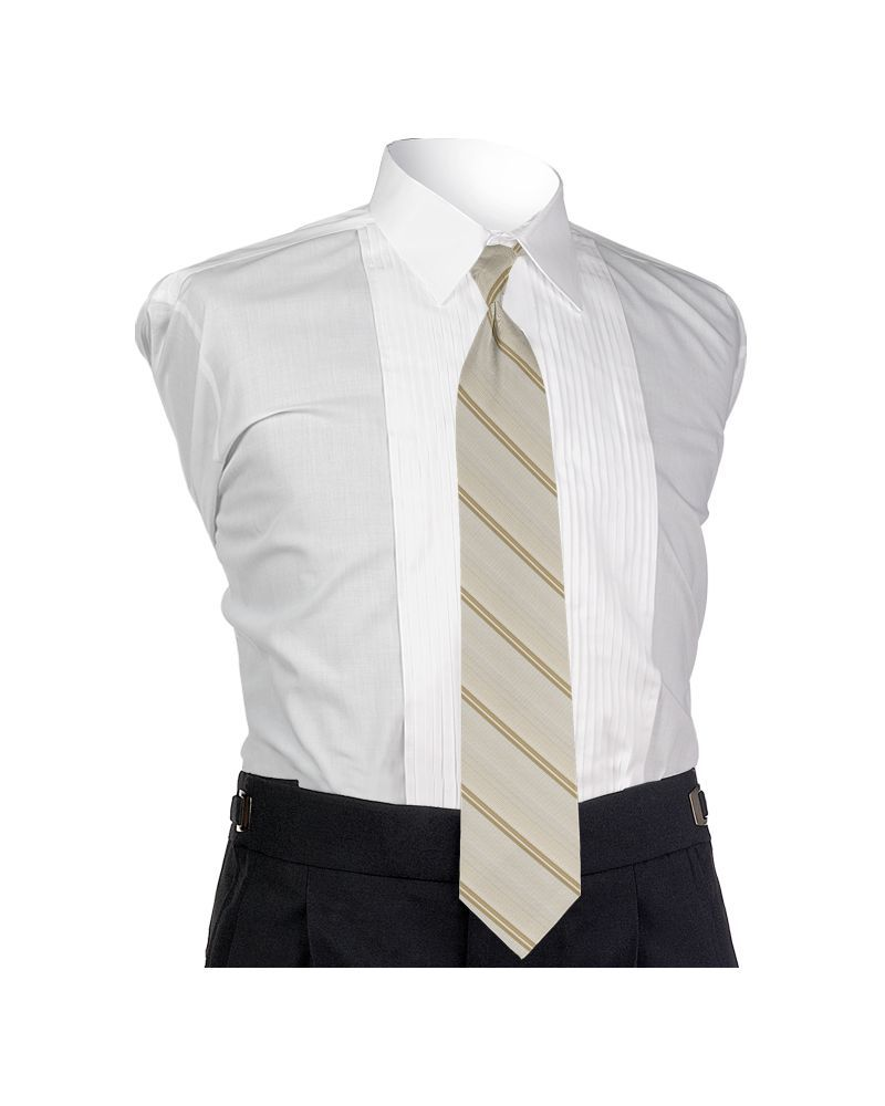 Carino Champagne Four-in-hand Tie