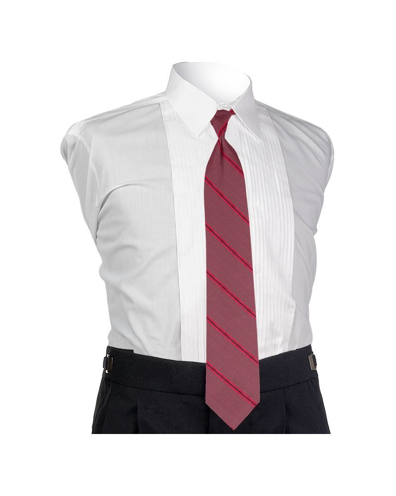 Carino Watermelon Four-in-hand Tie