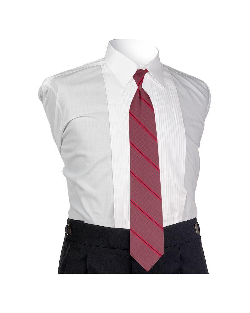 Carino Watermelon Four-in-hand Tie