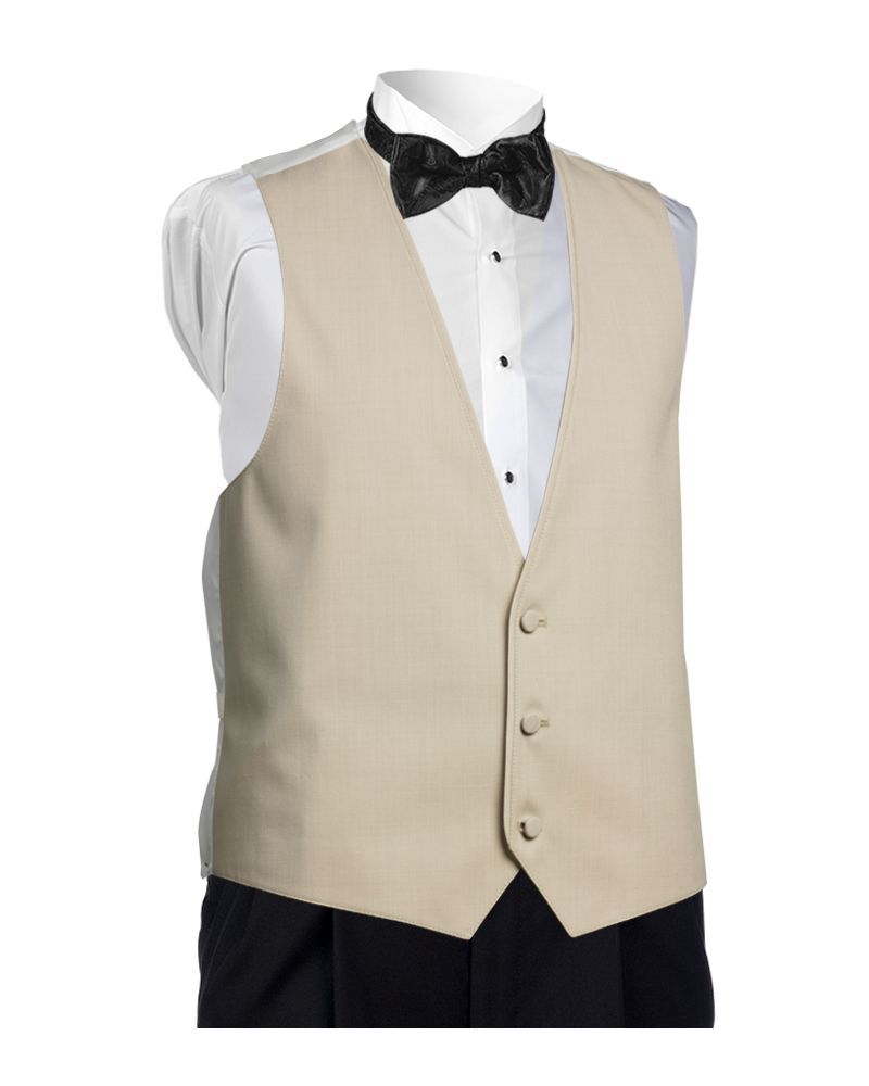 Allure Men Tan Color Matching Vest