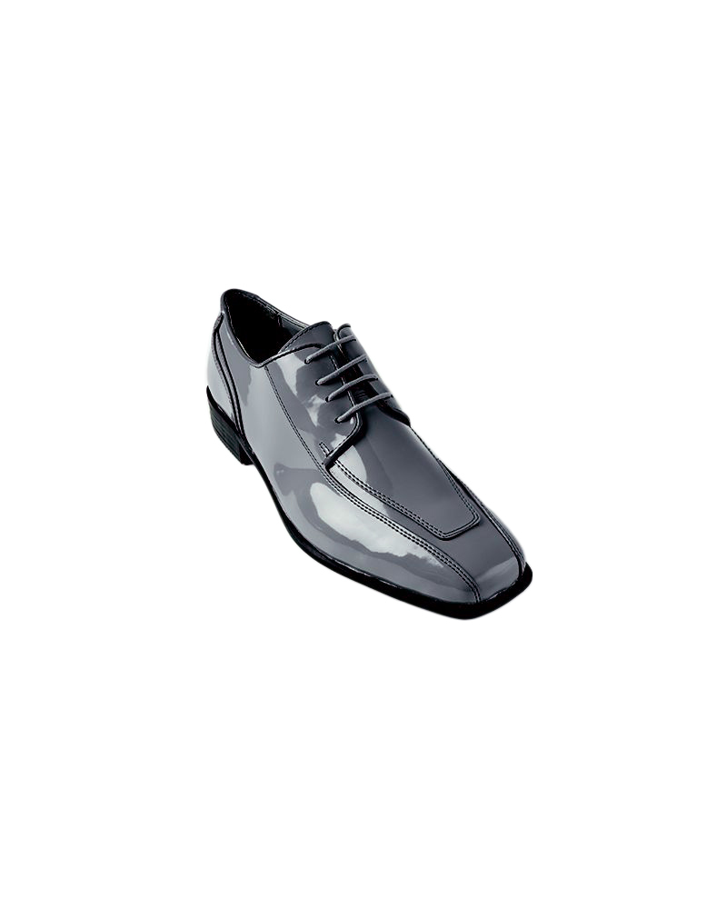Silver Cosmo Shoe